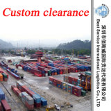 Import und Export Shipping Forwarder - China Importer, Freight Agent