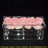 Cadre acrylique clair de fleur pour l'étalage de 9 roses