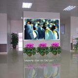 屋内LEDの壁スクリーンを広告するP5 SMD