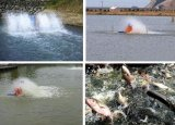 Impulsor de un estanque de peces de aireación de la rueda de paletas