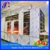 Machine van de Machines van de Verwerking van het voedsel Infrarode Drogere de plotseling