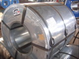 Heißes Dipped Galvanized Steel Coil mit Normal Spangle