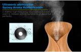 Shenzhen dituo máquina eléctrica de névoa de óleo essencial difusor de aroma ultra-sónico