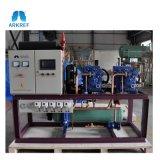 Unità massima minima del compressore di Reciping di temperatura per cella frigorifera enorme
