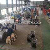 Condutor de ACSR (aço de alumínio do condutor reforçado)