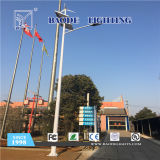 luz de calle solar de la batería de litio 50W de los 9m