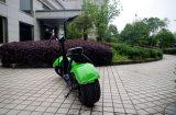 De beste Verkopende 60V 12A Batterij Citycoco/Seev/2 van het Lithium 1000W de Elektrische Autoped van het Wiel (jy-ES005)