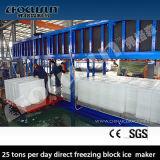 25 tonnellate per ghiaccio in pani di surgelamento diretto di giorno che fa macchina