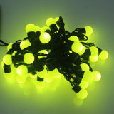 RGBTwinkling/Weihnachtszeichenkette-Licht Blinkensled
