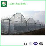Парник пленки Multi-Пяди для аграрного Seeding