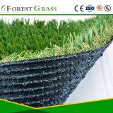総合的な草を美化するTUV SGSの証明