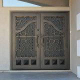 Шикарная внешняя двойная дверь ковки чугуна обеспеченностью с Screenand