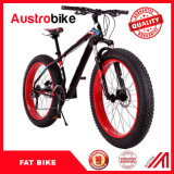 Fat Bike Frame Made in China, Novo estilo de boa qualidade MTB Snow Bike, Fat Bike, Fat Tire Bike, Carbon Fat Bicycle
