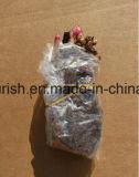 Fond herbacé de pivoine, ampoule de pivoine de plante de pivoine