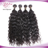 Onda natural bruto Virgem Brasileira Extensão de cabelo 100% de cabelo humano