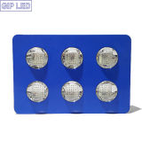Goede Feedback COB LED Grow Light 756W voor Medical Plants