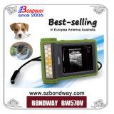 Scanner ultrasonico veterinario portatile della macchina di ultrasuono