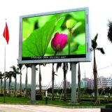 P8 Indoor/Outdoor publicidad a todo color de la pantalla LED (pantalla de LED, LED sign)
