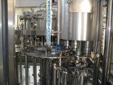 Nuevo tipo máquina de rellenar del pequeño de la botella jugo industrial automático por completo