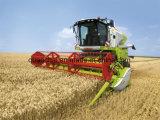 Motor diesel Turbocharged para la máquina segador de maíz 4c6-75m22