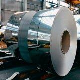 중국에서 강철 코일 제조자가 금속 코일에 의하여 직류 전기를 통했다