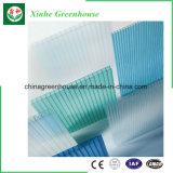 Xinhe Polycarbonat PC Blatt Multi-Überspannung Gewächshaus