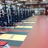 Gymsのために床を張る卸し売り余暇の開催地ウェイトトーレーニングルーム