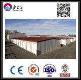 Entrepôt personnalisé par qualité de structure métallique (BYSS013)