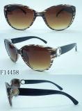 Óculos de sol do olho de gato da forma F14458 para senhoras com decoração