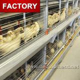 자동적인 가금 건전지 닭 층 감금소 가격