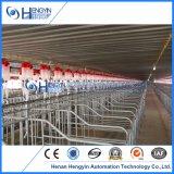 Производство оборудования для сельского хозяйства Pig созревания ящиков для свиноматок