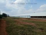 肉焼き器の農場のための自動家禽装置