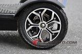 vespa de las ruedas 500With800W 3 con el bolso del llevar