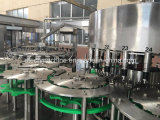Macchina di rifornimento in bottiglia animale domestico automatico dell'acqua minerale/linea di produzione completa