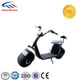 Ce scooter certifié Harley deux roues Fat 1000W