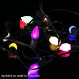 Edison 전구 LED Dimmable 옥외 끈 램프 소형 별 LED 지구 끈 빛