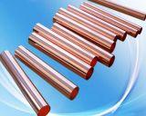 Barra di rame d'ottone su ordinazione di Electode del rame della barra rotonda per il setaccio