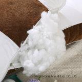 Fournisseur chinois Corduroy Cassia oreiller Core de soins de santé de l'oreiller en coton en PP