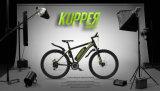 Hoge Macht Elektrische Bcycle met de Forens van de Mensen van de Lange Waaier