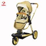 Einfach-Faltender dreirädriger Baby-Spaziergänger