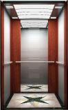 기계 Roomless를 가진 Fujizy 별장 엘리베이터 중국제
