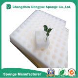 O Dibble Nontoxic de venda quente feito sob encomenda da agricultura fura esponja Growing do poliuretano