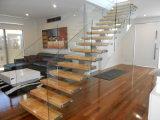 Innensich hin- und herbewegender Treppenhaus-Glasentwurf mit lamelliertes Glas-Jobstepp