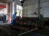 농업 관개 펌프를 위한 수평한 원심 디젤 엔진 수도 펌프