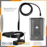 Handikap-Geräten-Ultraschall-Maschinen-Kosten (S8)