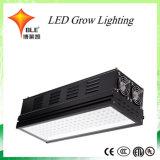 Preis-wachsen kluges Hochleistungs--Chip 170/210/400/490/600/660/800 Watt LED Licht