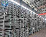Andamio del sistema de Ringlock de la venta del directorio de la fábrica de China