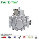 Tatsuno Fluss-Messinstrument für Kraftstoffpumpe-Zufuhr (TDW-BT65)