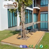 Plancher composé de paquet de la coextrusion WPC de Foshan utilisé pour la piscine