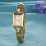 Het Horloge van dames past OEM van het Horloge van het Roestvrij staal (aan wy-040E)